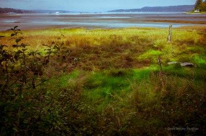 Low tide yet beautiful