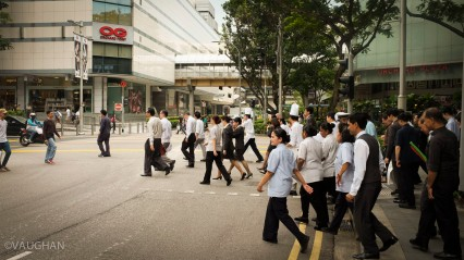 Singapore city workers continuously groom the public places.