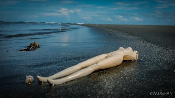Discarded headless Barbie on Baybay Beach, Roxas City.