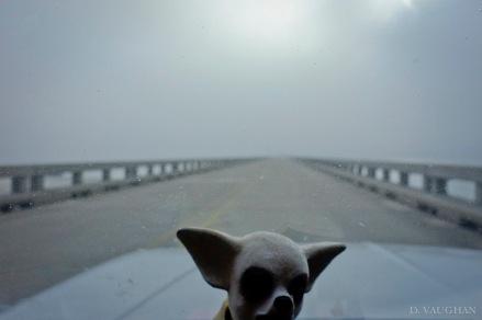 West of Galveston.