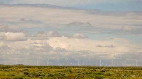Wind Power landscape.