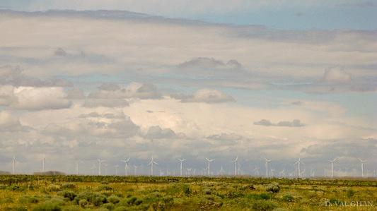 Wind Power landscape.