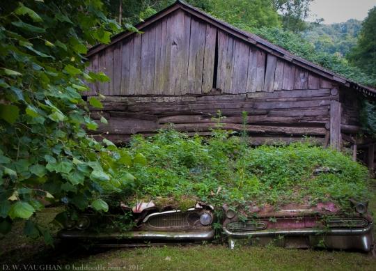 Eastern Kentucky, overgrown oldies.