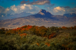The brief fall season in NW Wyoming.