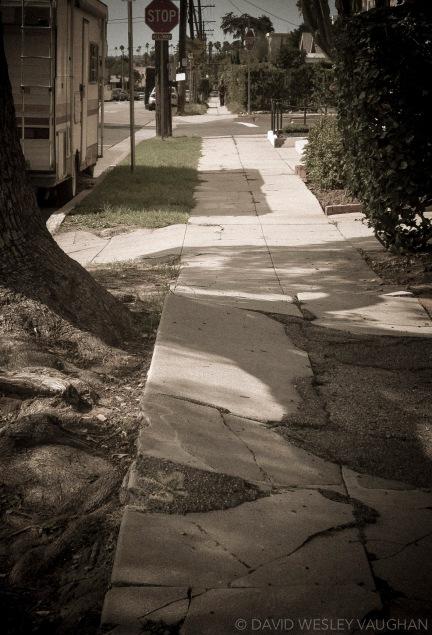 Fear the walking path